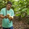 Montecristi Cocoa Farmer